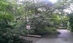 広い庭があります