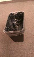 ゴミ箱です