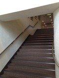 玄関から2階ロビーへの階段