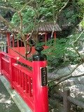 ホテル庭園内に掛かる橋