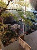 玄関横の池