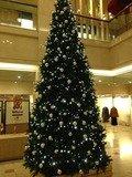 ロビーのクリスマスツリー