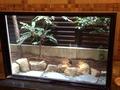 湯船奥の箱庭
