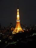 東京タワーが目の前に広がる光景