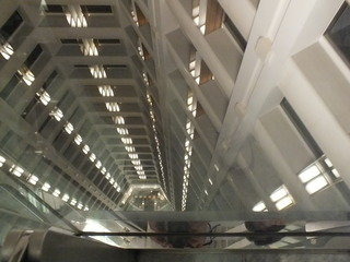 エレベーターホールからの眺め