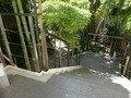 別館より竹林の小路
