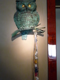 フクロウの目に注目