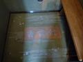 エレベータの絨毯