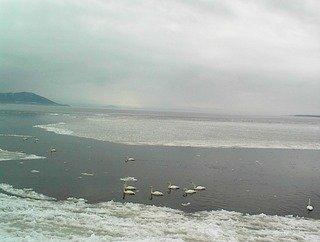 写真クチコミ:サロマ湖