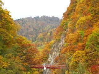 定山渓の紅葉