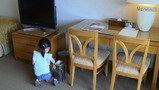部屋の中のテーブル