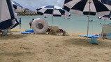 ビートパラソルと浮き輪