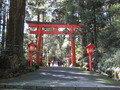 箱根神社。