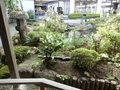 日本庭園もすてき