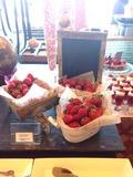 苺の食べ放題