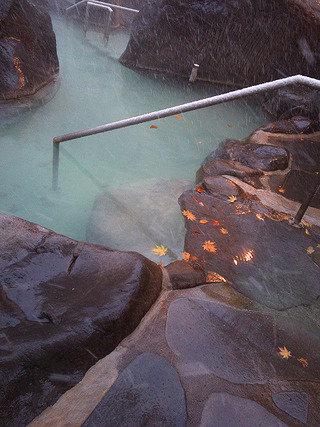 写真クチコミ:奥入瀬渓流ホテル
