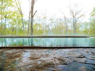 ニセコの森と一体になった温泉