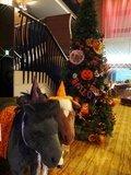 ハロウィン・クリスマス・年越しに!
