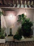 玄関前のグリーンスペース