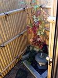 浴室から見える小庭