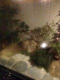 湯船から見える箱庭