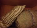 予備枕と布団