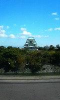 部屋からの名古屋城 昼