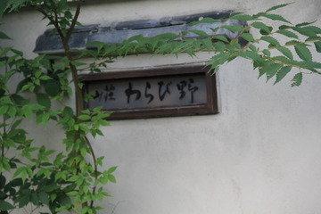 京都を思わせるような綺麗なお庭