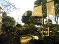 ホテルの中庭です。