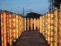 嵐電「嵐山駅」の「光の林」です。