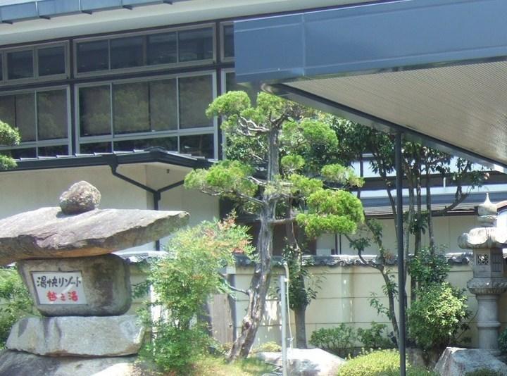 旅情や風情が感じられる勝浦の老舗旅館