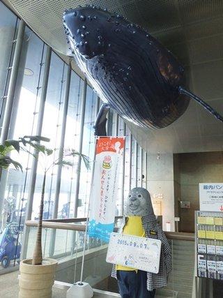 写真クチコミ:大分マリーンパレス水族館「うみたまご」