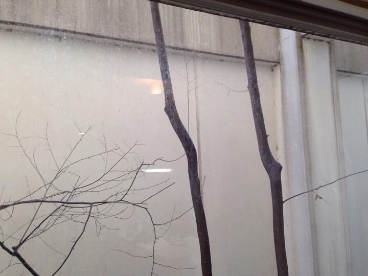 ウィルポート客室 窓の外