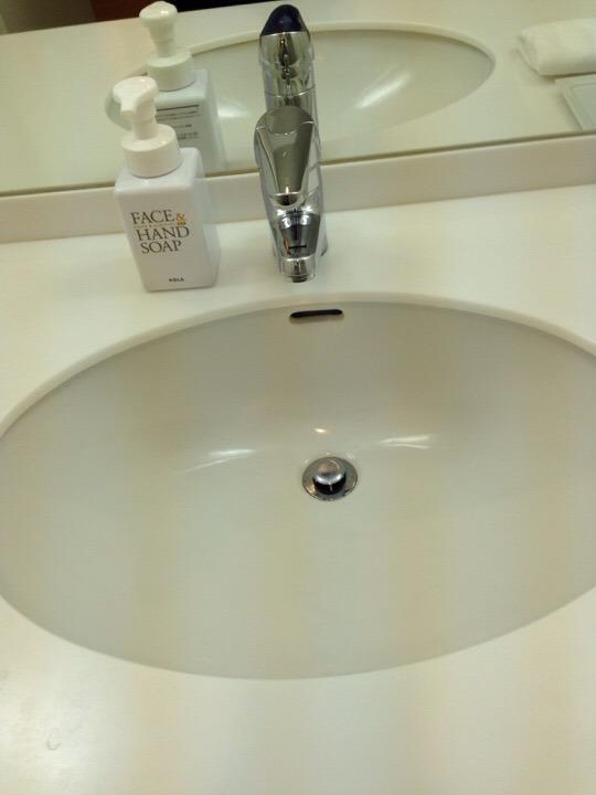 ウィルポート客室 洗面台