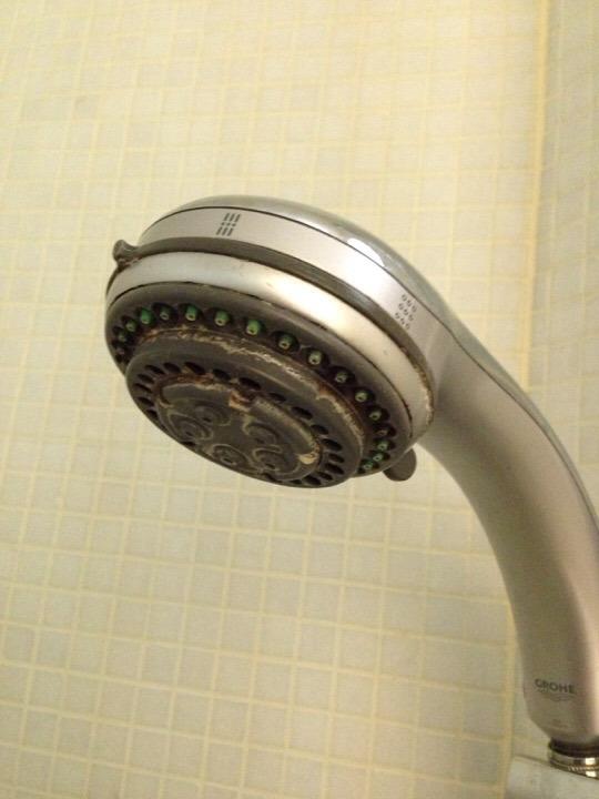 ウィルポート客室 シャワーヘッド