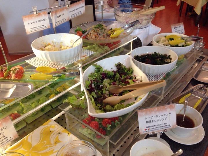 ウィルポート 夕食サラダ