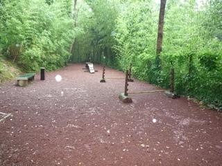 森のドックラン