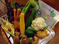 鎌倉野菜たち