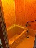 部屋風呂はかなり小さめ