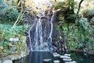 もう一つの滝、玉簾の瀧