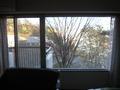 窓の大きさ