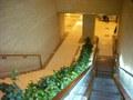 ホテル内のエスカレーター