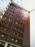 エントランスホールの木目調の壁