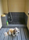 ワンコの足洗い場