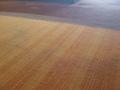 ロビーの床