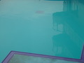 深いプール