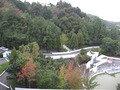 客室からの眺望(朝)