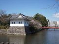 小田原城のお堀