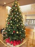 ロビーに飾られているクリスマスツリー