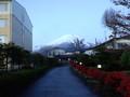 早朝散歩中の富士山